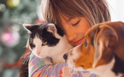 Víme, kde sjednat nejlepší pojištění pro psa nebo kočku ana co si dát pozor